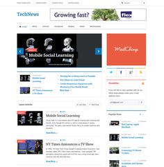 TechNews is specially designed for wordpress blog theme. Consulted by real and professional bloggers, you can find that TechNews is an ideal theme for your news blog.