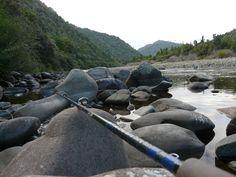 Fishing the Waioeka gorge