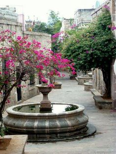 Morelia, Michoacan. México Where my family is from