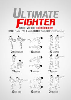 Ultimate Fighter - Darebee Workout