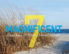 Read about the beaches of Hilton Head Island!