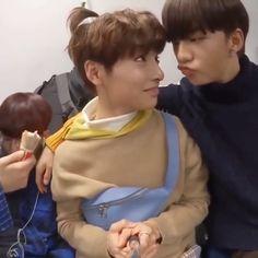 Hyunjin and jeongin Korean Boy Bands, South Korean Boy Band, Felix Stray Kids, Kid Memes, Crazy Kids, Kids Videos, Lee Know, Lee Min Ho, K Pop