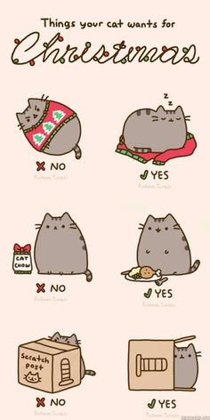 cat christmas presents... so true :D