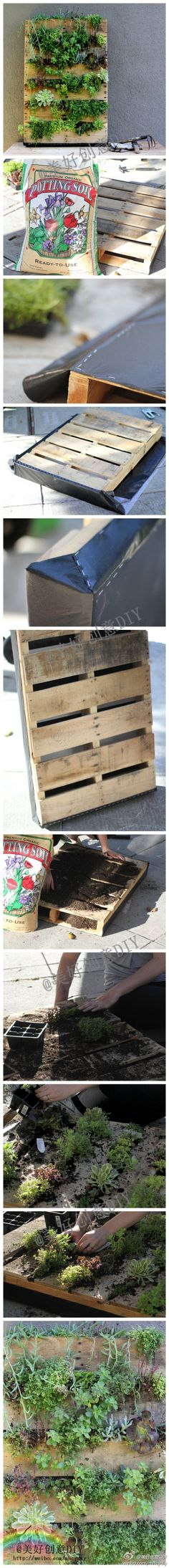 DIY tutorial - easy vertical gardening with recycled pallets.