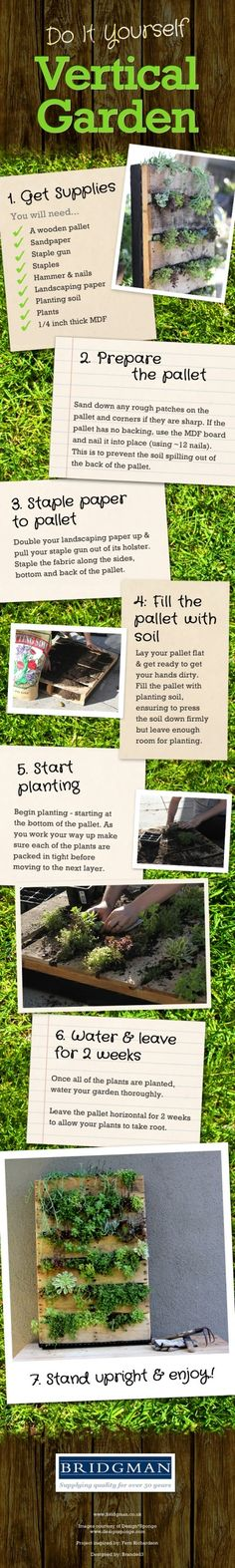 DIY Gardening: How to create a Vertical Wall Garden DIY vertical garden wall infographic Container Gardening, Gardening Tips, Companion Gardening, Vegetable Gardening, Vertical Pallet Garden, Verticle Garden, Garden Pallet, Diy Pallet, Pallet Fence