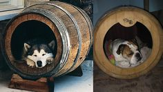 wine barrell dog houses -- so cute!