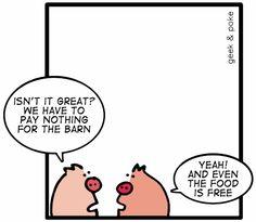Geek-and-poke-pigs-free