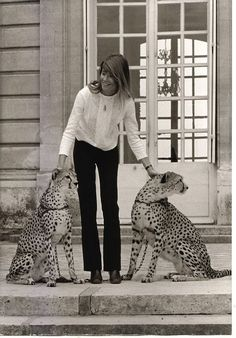 Francoise Hardy makes friends with some cheetahs
