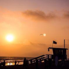 Santa Monica State Beach - Santa Monica, CA