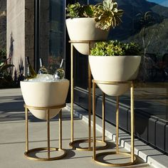 Eliana Planter/Beverage Cooler