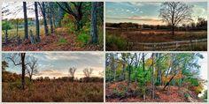 Photo Print Set #Tennessee #Countryside #November #Dusk Autumn #photography by FernwehFreya on Etsy