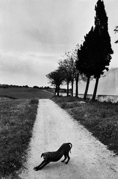 Josef Koudelka, Spain 1977. We're all having a little stretch here.