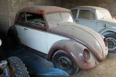 A rare 1952 split convertible in Austria Beetle Bug, Vw Beetles, Barn Finds, Convertible, Volkswagen, Antique Cars, Automobile, Vehicles, Austria