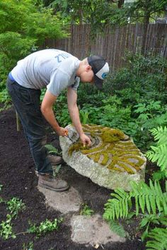 Alex placed moss in the carved grooves of the stone sculpture, after I set ostrich ferns to one side to give it a lacy backdrop and smaller ferns in front to bring softness to its base.