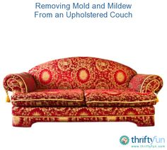 This is a guide about removing mold or mildew from an upholstered couch. Stored furniture can develop mold or mildew on the upholstery. Diy Mold Remover, Mold And Mildew Remover, Cleaning Mold, Cleaning Tips, Organizing Tips, Remove Mould From Fabric, Remove Mold, Remove Mildew Stains, Diy Molding