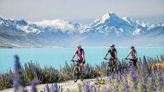 プカキ湖沿いをサイクリング、アオラキ/マウント・クック国立公園
