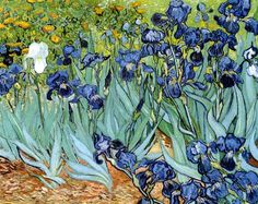 """Sometimes I long so much to do landscape, just as one would go for a long walk to refresh oneself, and in all of nature, in trees for instance, I see expression and a soul.""  Vincent van Gogh, Irises (1889)"