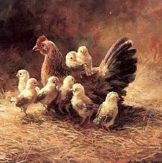 Farm Paintings, Animal Paintings, Animal Drawings, Chicken Painting, Chicken Art, Duck Pictures, Pictures To Draw, Drawing Pictures, Images Of Cows