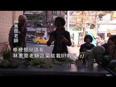 林惠蘭老師蔬菜盆栽DIY教學1