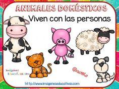 Tipos de animales claseficación (4)