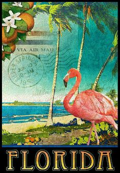 Florida Flamingo Beach Poster Print By R Christopher Vest St. Petersburg and Florida Art www Flamingo Beach, Flamingo Art, Pink Flamingos, Flamingo Painting, Vintage Travel Posters, Vintage Postcards, Foto Art, Poster Prints, Art Prints