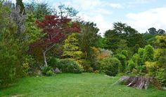 Giardino inglese, come farlo: istruzioni sulla gestione dello spazio per realizzare un giardino all'inglese con prato, bordure ed elementi ad hoc.