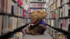 Samson, VU's Lion mascot, recently had a makeover. Watch his transformation here!