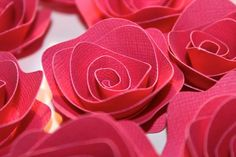 Fuchsia rosette style paper flowers by Steph
