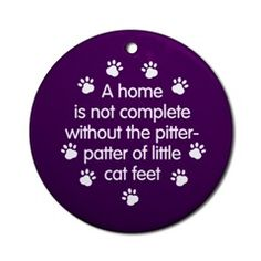 ♥♥♥♥ Pitter-patter???? I must have elephant cats ♥ (Must love cats)