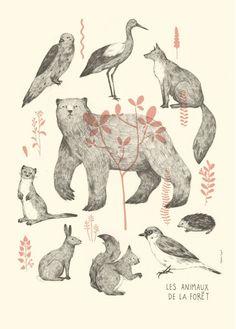 Affiche Illustration Animaux de la Forêt, Nature, Clémence Dupont