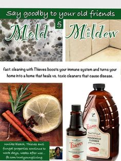Thieves Household cleaner for mold and mildew. Oily Mommie Ashley Sanford #1685572