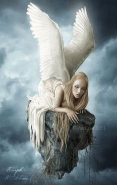 Fallen to a pale desire Angel Fantasy Myth Mythical Legend Wings Warrior Valkyrie Anjos Goth Gothic Angels Among Us, Angels And Demons, Fantasy World, Fantasy Art, I Believe In Angels, Ange Demon, Dark Angels, Fallen Angels, Angel Pictures