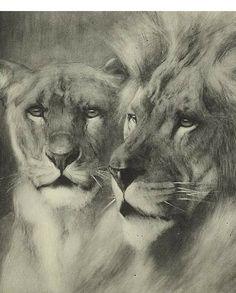 Vintage Lion & Lioness Portrait