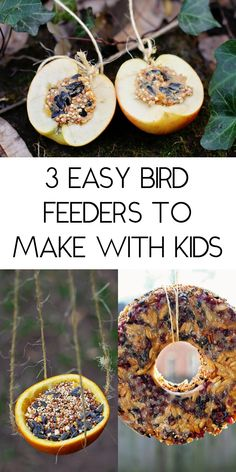 3 easy bird feeders to make with kids from things you already have at home!