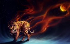 Abstract Art, Abstract Digital ,Abstract Fire Tiger, Abstract Wallpapers HD