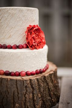 Textured buttercream frosting two tier white cake with cranberry bands & sugar flower on wood base