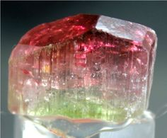 WOW 48 carats Top Quality Terminated & Gemmy Bi Color TOURMALINE Crystal @Paprok