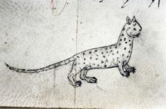 spotted wildcat (edward of norwich, 'the master of game', english 15thC (ms bodley 546, fol. 40v)