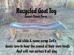 Goat toy!                                                       …