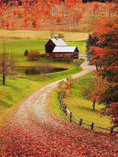 Sleepy Hollow Farm, Vermont , USA. it would be so sweet to drive a rally car on this road cause of all the leaves on it, they would go everywhere!