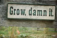 Grow, damn it!