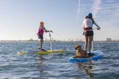 Mirage Eclipse - stand up pedaling paddle board