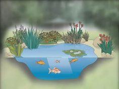 Wo Grün begeistert: So entsteht ein Schwimmteich-Garten - YouTube