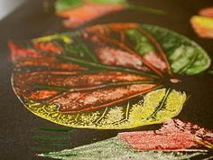 Leaves covered in white paint, pressed onto black paper, then when dry color with colored pencils.