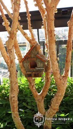 Decoração para varanda para Receber bem e com todo conforto! Por Patricia Junqueira www.Patriciajunqueira.com.br