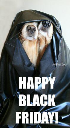 Happy Black Friday! #goldenretriever