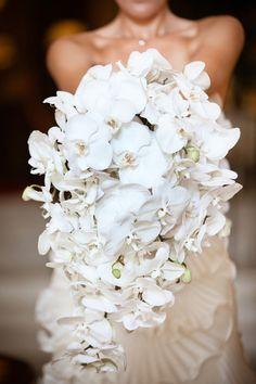 Cascading Bouquets Wedding Flowers Photos on WeddingWire