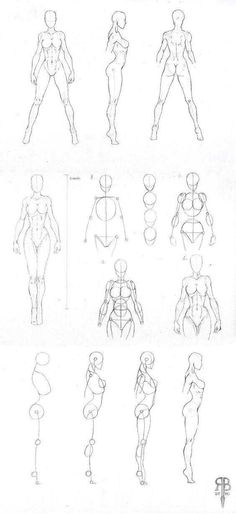 Explore collection of Female Body Drawing Human Body Drawing, Body Reference Drawing, Female Drawing, Gesture Drawing, Drawing Poses, Art Reference Poses, Drawing Lessons, Drawing Body Proportions, Drawing Drawing