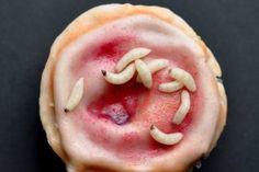 ¿Horripilantes pero deliciosos? Cupcakes perfect for Halloween