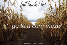 fall bucket list: Go to a corn maze